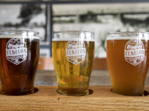 A flight of three beers in Fenelon Falls Brewery glasses